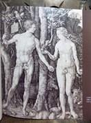 Mestres da Gravura, B. Nacional, Biblioteca Mário VII-073.302 Too1m (4). ALBRECHT DÜRER (1471-1528). Adão e Eva, 1504. Buril, 15X19,2 cm.