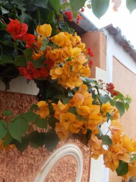 Primaveras_29-05-13__10_ (1)
