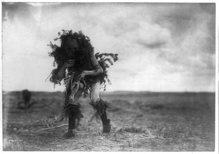 http://www.loc.gov/pictures/resource/cph.3b44262/?co=ecur.  Yebichai, the beggar, Tonenili-Navajo Indian, dressed in spruce branches, 19]04, c1905, Curtis, Edward S., 1868-1952