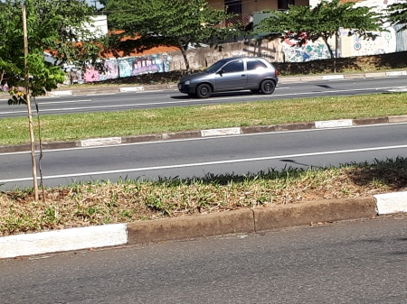 arte de rua - expressar - liberdade