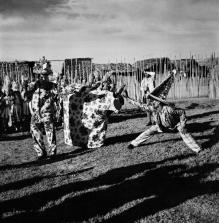 Marcel Gautherot, Bumba-meu-boi de Gururupu-Ma-(Maranhão de Amanda)